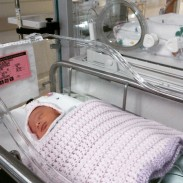 NICU Crib
